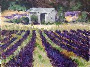 Van Gogh Lavender