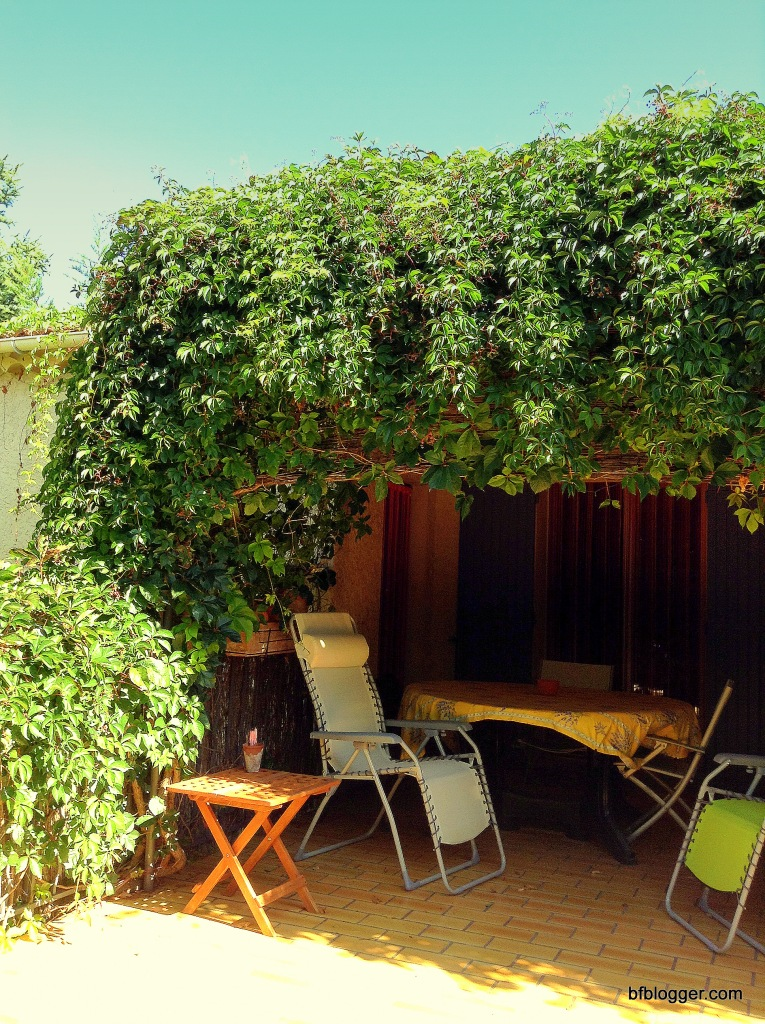 Virginia Creeper provides shade for French terraces