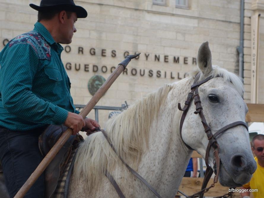 Horsemen from the Camargue