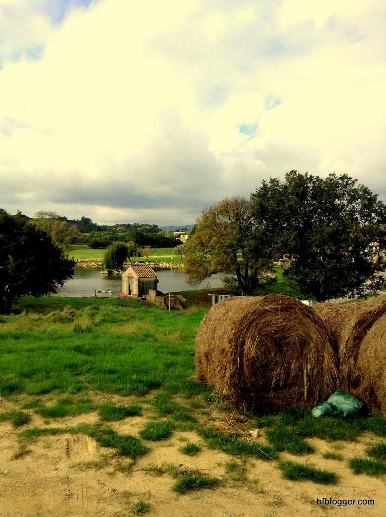 Farm spread out for acres in the countryside