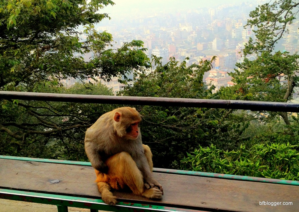 Monkey Temple above valley of Kathmandu