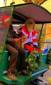 Saint Nicolas makes his appearance wishing all a 'Joyeux Noël'