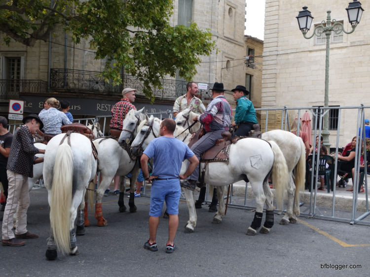 Horse and riders from the Camargue wait for the action to start.
