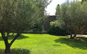 Manicured lawn at Mas d'Augustine